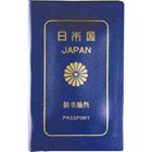 Mini Passport Condome