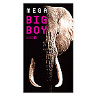 Mega Big Boy 2000