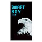 Smart Boy 2000
