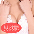 Sexual Smell Series] Bra & Panty Of A Girl During Sex (Sexy)