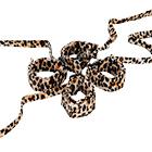豹柄4点拘束セット