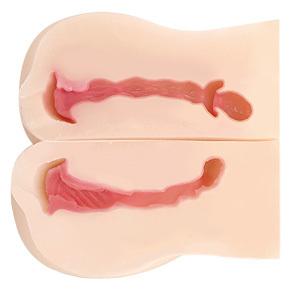 特性の違う2つの膣道と、肉塊に挟まれるすき間を備えた3穴仕様。2重構造ならではのネットリした粘膜感も◎。
