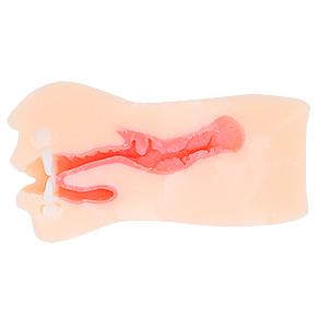 歯がシッカリ接着され、粘膜素材も厚め。適度な突起群や狭いノド奥の締まりなど、トータルバランスに秀でます。