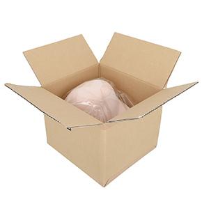 専用のパッケージやラベルシールなどはなく、ビニール包装された本体が、無地ダンボールに梱包されています。
